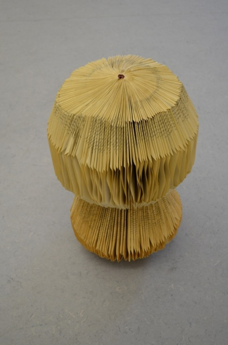 Christina Mitrentse, 300 pages in a Mushroom, part of #ATML Vol. III, 2013